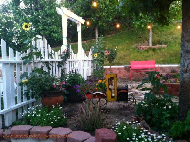 Garden 2015 - lights